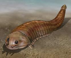 500 Million-Year-Old Creature Unearthed