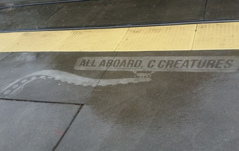 Water-Activated Street Art Reveals Itself in the Rain