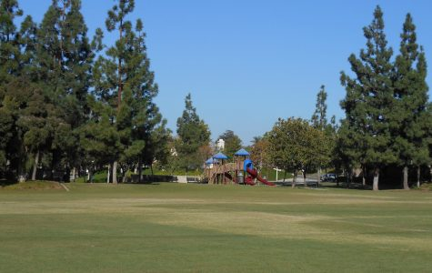 Yorba Linda City Council Accepting Bids for New Dog Park
