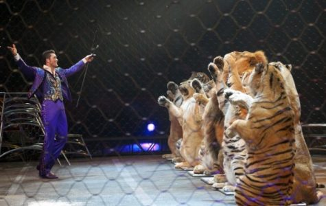Ringling Bros. Circus Shuts Down amid Controversy After 146 Years