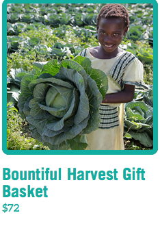 Heifer+International%3A+Giving+the+Gifts+of+Bees%2C+Flocks+of+Ducks+and+Livestock+to+End+World+Hunger
