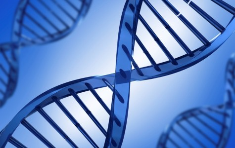 Gene-Editing Technology May End Cancer