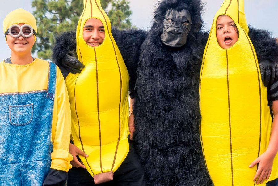 Grant Donatucci (far left), Adrian Moreno (left center), Donald Walter (far right), and their gorilla friend ( right center)
