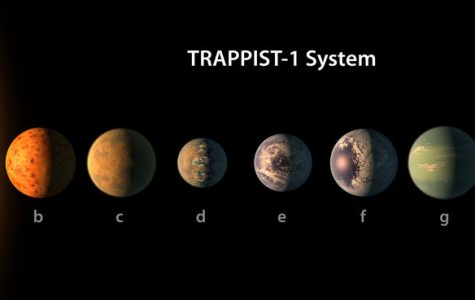 NASA Announces the Discovery Of Seven Planets Similar to Earth