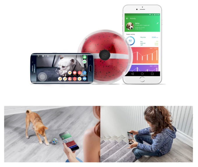 Kickstarter+of+the+Week%3A+Pebby+-+Robotic+Pet+Sitter