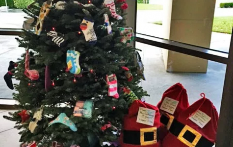 CSEA Sponsors Sock Tree Charity Event