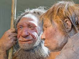 Eight Things You May or May Not Have Known About Neanderthals