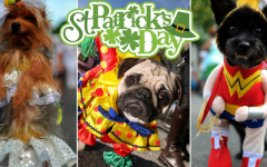 Cheap But Chic: St. Patrick's Day Hot Spots for Both Kids and Adults