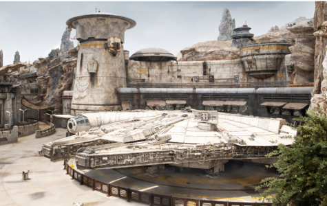 """Why Are the Crowds So Low at """"Disney's Star Wars: Galaxy's Edge""""?"""