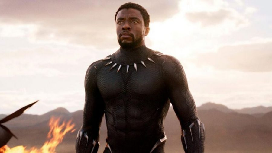 Chadwick Boseman as King T'Challa/Black Panther in the blockbuster movie Black Panther in 2018