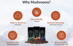 How Peak State mushroom infused coffee can medically benefit you