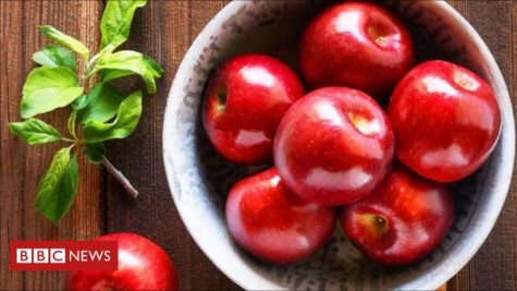 Breakthrough of the 21st Century: Apples That Can Last A Year